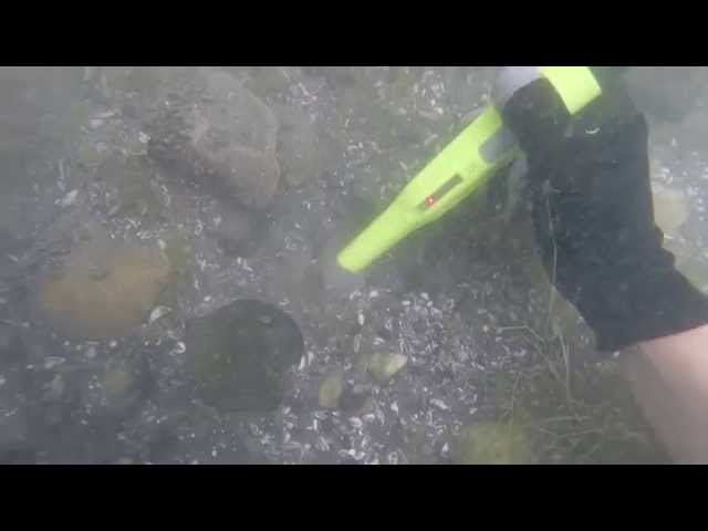 Deteknix XPointer Diver пинпоинтер подводный