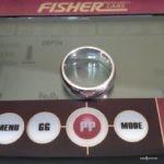 Что можно найти на Европейском пляже с металлоискателем? (Золото, еврики и Fisher F44 с Nel Tornado)
