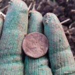 А вы копаете осенние поля? (Вести с полей, находки+)