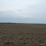 Сезон распаханных полей