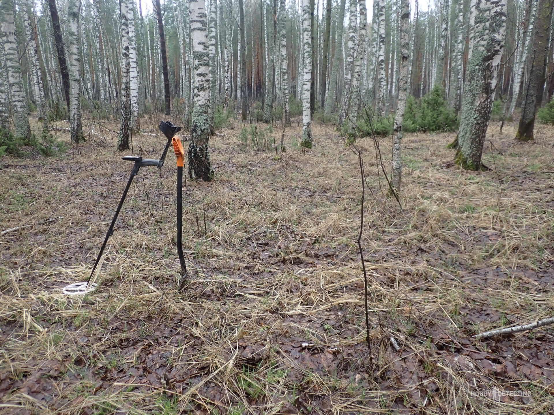 Искал в лесу поселушку, а нашел россыпуху ранних советов. Рассказываю, как дело было